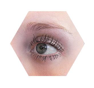 oog1 (1)